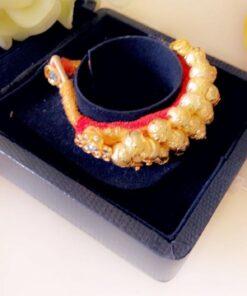 Golden rajwara poochi